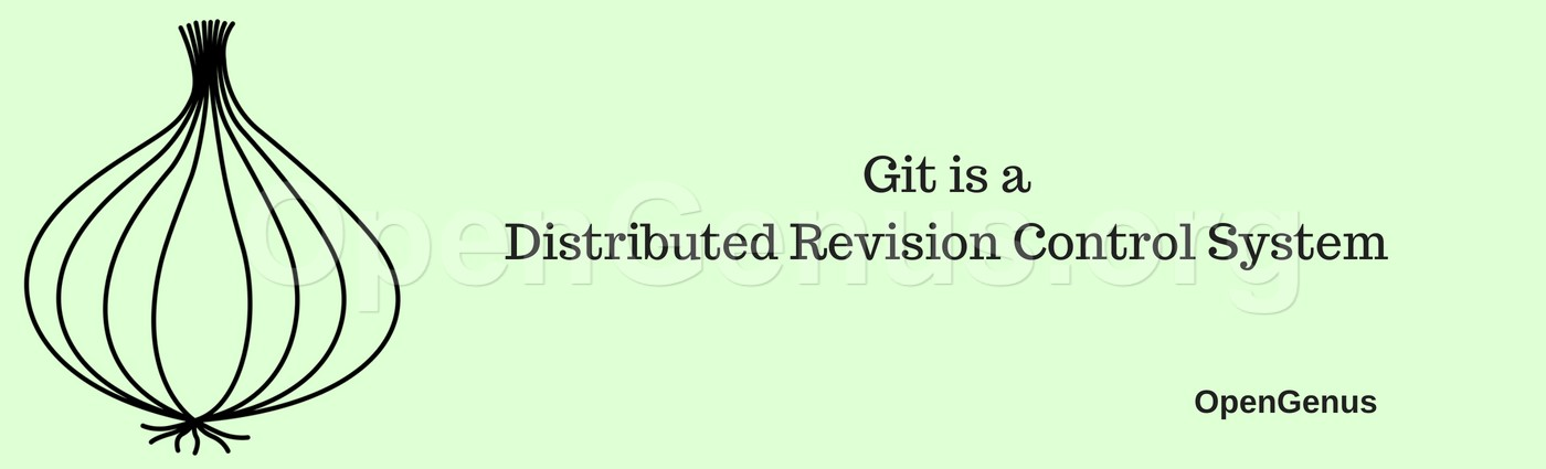 Git is a Distributed Revision Control System