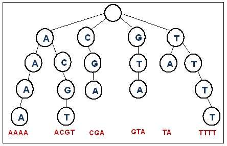 Ternary Search Trees