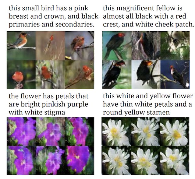 Example of Textual Descriptions and GAN-generated photos of flowers and birds