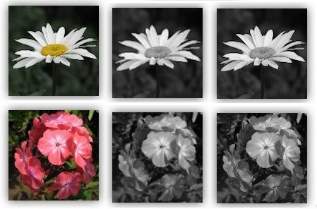 Converting colored images (RGB) to grayscale using Autoencoder